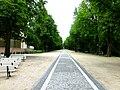 Bad Homburg – Kurpark, Brunnenallee - panoramio.jpg