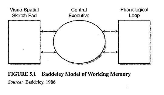 工作記憶嘅模型圖解