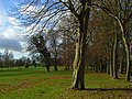 Badgemore Park Golf Club - geograph.org.uk - 1067205.jpg