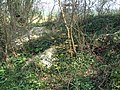 Badger Setts on Lord's Down - geograph.org.uk - 423895.jpg