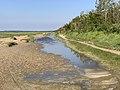 Baie Authie - Fort-Mahon-Plage (FR80) - 2021-05-29 - 8.jpg