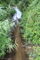 Balážov potok.png