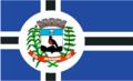 Bandeira Jacupiranga.png