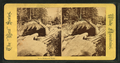 Basin, Franconia Notch, from Robert N. Dennis collection of stereoscopic views 7.png