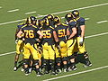 Bears in huddle at UCLA at Cal 10-25-08.JPG