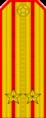 Belarus MIA—05 Lieutenant Colonel rank insignia (Golden).png