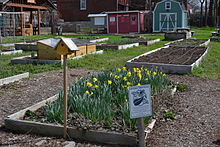 Bell Demonstration and Community Garden, Gateway Greening, St. Louis, MO.