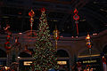 Bellagio - Conservatory - Winter 2010.jpg
