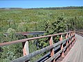 Bellevue Trestle In The Summer - panoramio.jpg