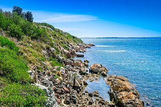 Bennison Island island near Wilsons Promontory in Victoria, Australia
