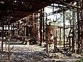 Bhopal Plant 5.JPG
