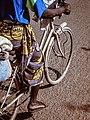 Bicycle time.jpg