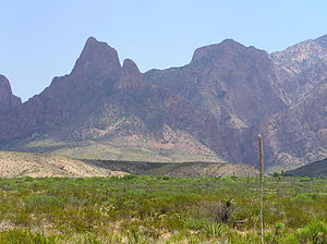 Chisos Mountains - A photo of the Chisos mountain range from the desert to the east, 22 February 2002.