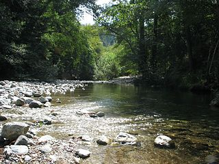 Big Sur River river in the United States of America