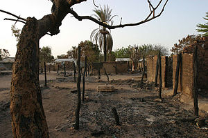 Central African Republic Bush War - Image: Birao burnt down