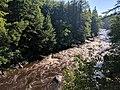 Blackwater Falls State Park WV 12.jpg