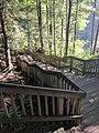 Blackwater Falls State Park WV 34.jpg