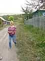 Blue flowers - panoramio.jpg