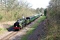 Bluebell Railway train - geograph.org.uk - 390350.jpg