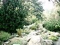 Botanical garden in Poznań19.JPG