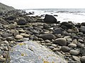 Bouldery shore at Rubha Garbhard - geograph.org.uk - 2404973.jpg