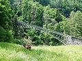 Brücke der Reichenbachfall-Bahn mit Ziege - panoramio.jpg