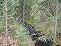 Brattfors DSC01310.JPG