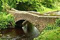 Bridge over Clapham Beck in Clapham (7872).jpg