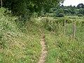 Bridleway near Bapton - geograph.org.uk - 1375721.jpg