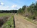 Bridleway over track Alderholt Dorset - geograph.org.uk - 298137.jpg