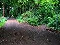 Bridleway to Quarr Abbey - geograph.org.uk - 530546.jpg