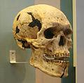 British Museum Egypt 135.jpg