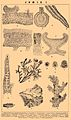 Brockhaus and Efron Encyclopedic Dictionary b34 867-1.jpg