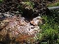 Brook at Skendleby - geograph.org.uk - 554226.jpg