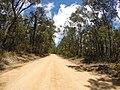 Brooman NSW 2538, Australia - panoramio (139).jpg