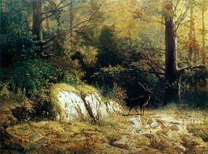 Feliks Brzozowski - Image: Brzozowski Forest landscape