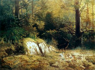 Forest landscape with a deer.