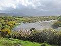 Bunowen River - geograph.org.uk - 2401087.jpg
