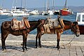 Burros and Boats, Hydra, Greece (9266078442).jpg