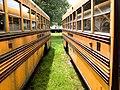 Bus Bus Parallelism (7234471488).jpg