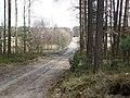 Byłem na Wilczych Ługach małymi krokami idzie wiosna 08 - panoramio.jpg