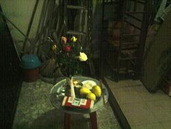 http://az24.vn/hoidap/huong-dan-cach-cung-giao-thua-ngoai-troi-d2896551.html