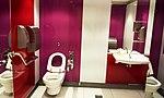 CDG airport toilets 8.jpg