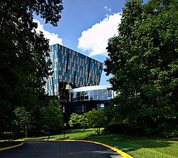 Window Film Wikipedia