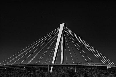 Cable-stayed bridge (tuibrug) 01.jpg