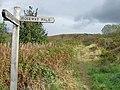 Caerphilly Common - Taff Ely Ridgway Walk - geograph.org.uk - 571013.jpg