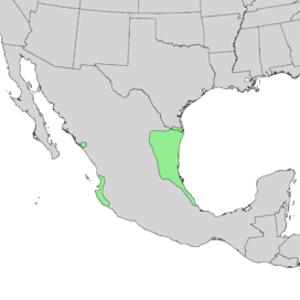 Caesalpinia mexicana range map 2.png