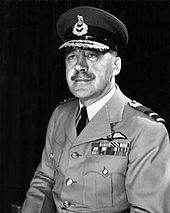 Portrait of man in light-coloured military uniform with pilot's wings on chest, wearing peaked cap with two rows of braid