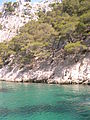 Calanques Marseille Cassis 33.JPG