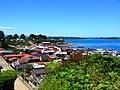 Calbuco Island, Chile 102.JPG